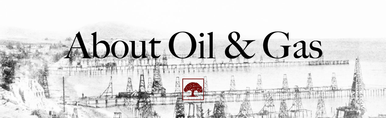 About Oil Gas Terre Verte Company Inc